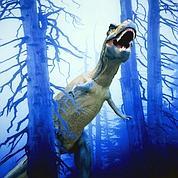 Le T. rex avait de tout petits ancêtres
