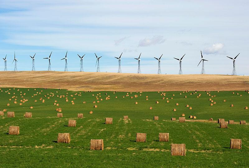 Mardi 28 septembre, près d'Alberta, notre regard se perd dans la prairie canadienne surplombée par les éoliennes. Cette région est l'une des plus venteuses au pays.