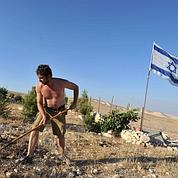 Les colons relancent les chantiers