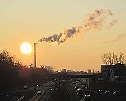 Le groupe Descartes a calculé que le fait d'implanter de nouvelles forêts en Ile-de-France pouvait faire diminuer la température à l'intérieur de la capitale de 2°C à 3°C.