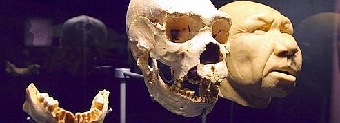 Les hommes préhistoriques s'occupaient des «seniors»