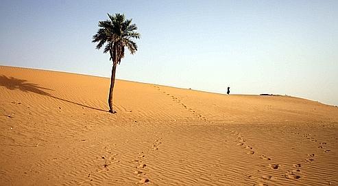 Sahel : Al-Qaida empoisonne les relations entre voisins