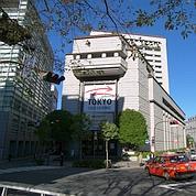 Le Japon entre en phase de stagnation