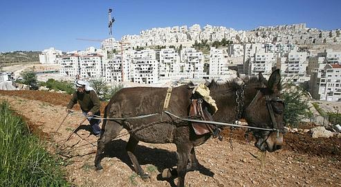 Israël doit concilier habitat, agriculture et environnement