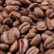 Le café au plus haut depuis 13 ans