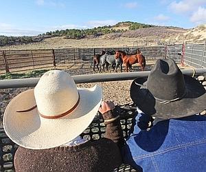 Pendant les pauses, les cow-boys s'entraînent au lasso et veillent sur les «captifs». (Georges Mérillon)