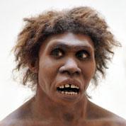 L'homo sapiens plus malin que le Néandertalien