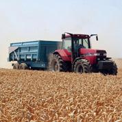 Les agriculteurs se couvrent sur les marchés à terme