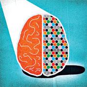 Les aléas de la vie affectent les gènes