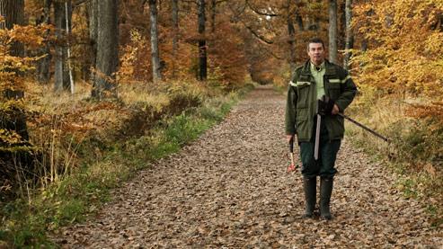 Filière bois : une journée avec un agent de l'ONF