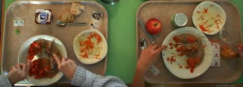 Les assiettes de nos enfants pleines de résidus chimiques