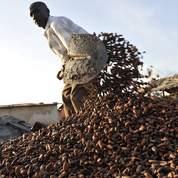 La crise ivoirienne fait flamber le cacao