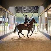 L'équitation séduit les adolescentes