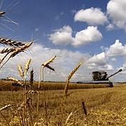 Les matières premières agricoles s'envolent