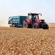 Inquiétudes sur le suicide des agriculteurs