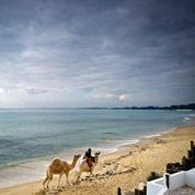 La Tunisie mise sur un printemps touristique