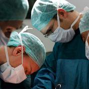 Les progrès notables des greffes d'organes
