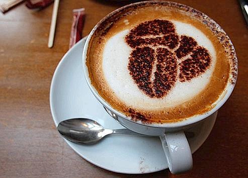 La caféine, à dose habituelle (soit 400mg/j), aurait un effet protecteur contre la maladie de Parkinson. Crédits photo: REUTERS/Phil Noble.