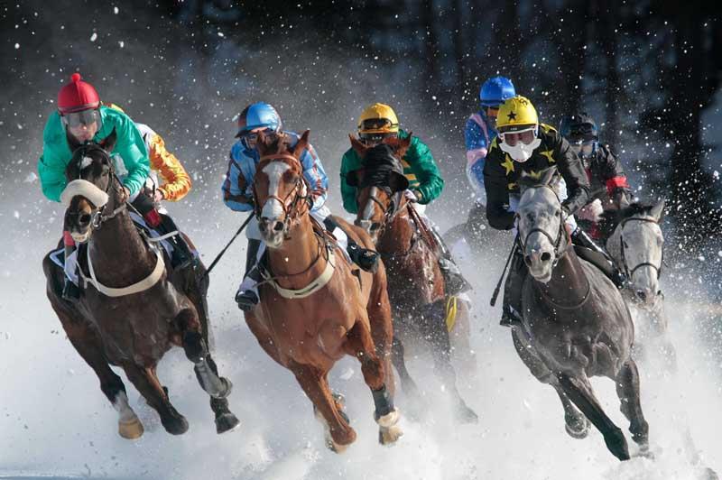 Les trois premiers dimanches de février, des courses de chevaux sont organisées sur le lac gelé de Saint-Moritz, commune suisse du canton des Grisons. Pour cet événement, les chevaux sont équipés de fers à crampons.