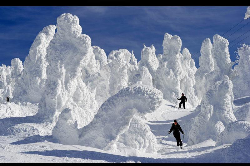 <b>UNE NEIGE MONSTRUEUSE ! </b> Mais ce n'est pas en France qu'elle est tombée, hélas pour les vacanciers de février qui sont nombreux à redouter le manque de poudreuse sur nos sommets. Une crainte qui n'effleure sûrement pas ce couple de skieurs japonais, heureux résidents de la station de Yamagata, dans le nord-est de l'archipel, célèbre pour la splendeur des «monstres de neige» qui font, très ponctuellement, leur réapparition sur ses flancs. Des « monstres » qui dissimulent en réalité de simples arbres, d'abord courbés puis figés par un vent très givrant, avant de se retrouver enveloppés sous plusieurs couches de neige d'un type spécialement humide, propre aux régions côtières de l'océan Pacifique.
