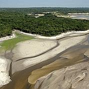 La sécheresse fragilise la forêt amazonienne