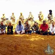 L'otage française au Niger libérée