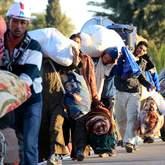 Des Égyptiens ayant fui la Libye tentent de rentrer dans leur pays depuis la Tunisie.