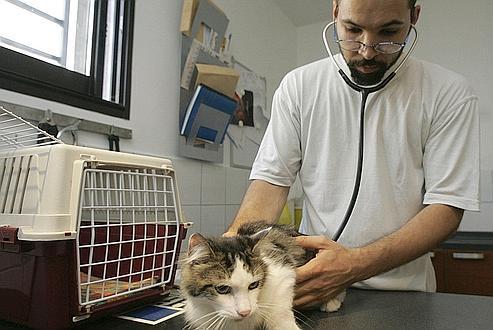 Santé animale: Sanofi et Merck se séparent