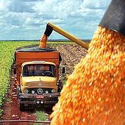 G20 agricole: le plan de bataille de la France