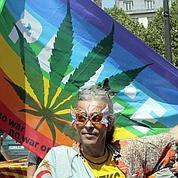Cannabis : la marche peine à mobiliser