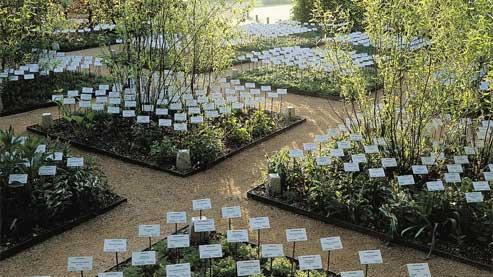 «Le jardin des plantes disparues.» (Eric Sander)