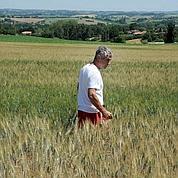 Les agriculteurs ne peuvent plus s'assurer