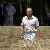 Céréales: la Russie lève son embargo en juillet