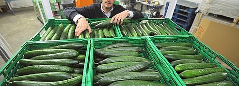 L'UE appelle la Russie à lever son embargo sur les légumes