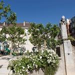 Le square Suzanne-Buisson