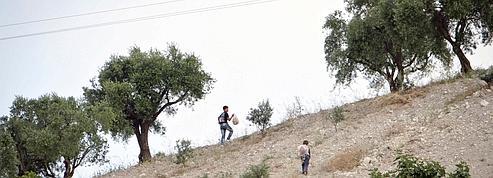 Des milliers de Syriens trouvent refuge en Turquie