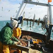 Pêche: l'Europe trop gourmande