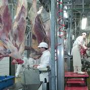 Viande : Le Maire veut renégocier les prix