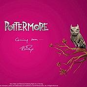 Le futur projet de J.K. Rowling agite le web