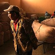 Bolivie: la puissance des syndicats cocaleros