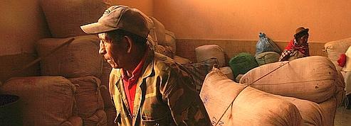 Bolivie: la puissance des syndicats «cocaleros»