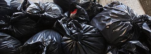Alfapac crée le sac-poubelle en plastique végétal