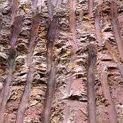 D'énormes gisements de terres rares révélés