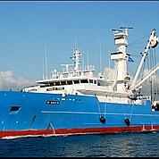 Piraterie : des milliers d'euros par bateau