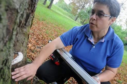 Isabelle Lohou est employée par la Mairie de Paris pour veiller sur les arbres de la capitale (Photo: Pierre Manière).