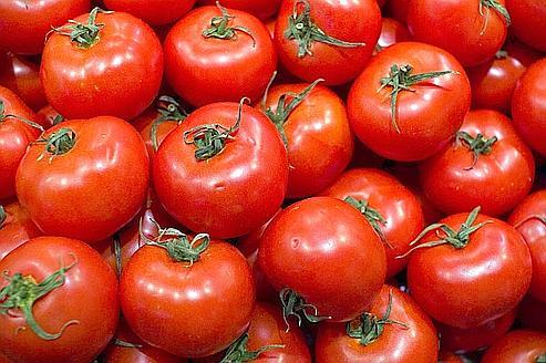 «Le prix de la tomate a diminué en moyenne de 28% sur les cinq dernières années pendant plus de cinq jours consécutifs» explique Pierre Diot. (Crédits photo: Procsilas Moscas/CC License By)
