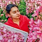 L'éclatant business des fleurs