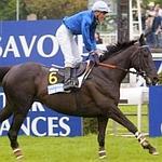 Kotkijet a permis à l'écurie Wildenstein d'ajouter le Grand Steeple-Chase de Paris à sont palmarès en 2001. (Scoopdyga)