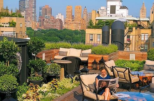 New York Sur Les Toits La Vie Au Dessus De La Ville