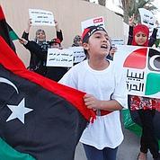 Les rebelles se battent, Saadi Kadhafi au Niger